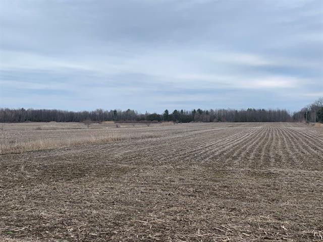 Terre à vendre à Brigham, Montérégie, Chemin  Hallé Ouest, 25754943 - Centris.ca