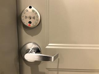 Condo / Appartement à louer à Lévis (Desjardins), Chaudière-Appalaches, 1600, Rue  Mozart, app. 104, 23435344 - Centris.ca
