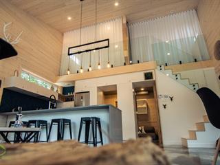 House for sale in Saint-Donat (Lanaudière), Lanaudière, 102, Chemin du Lac-Kri, 23443953 - Centris.ca
