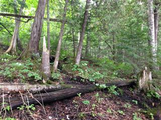 Lot for sale in Nominingue, Laurentides, Chemin  Zénon-Hébert, 16977341 - Centris.ca