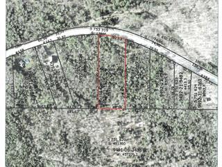 Lot for sale in Potton, Estrie, Chemin de Vale Perkins, 15112896 - Centris.ca