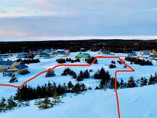 Terrain à vendre à Les Îles-de-la-Madeleine, Gaspésie/Îles-de-la-Madeleine, Chemin des Caps, 27789709 - Centris.ca