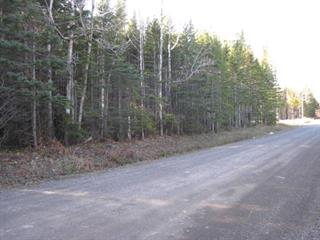 Terrain à vendre à Gaspé, Gaspésie/Îles-de-la-Madeleine, Avenue  McDonald, 25417031 - Centris.ca