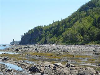 Terrain à vendre à Sainte-Anne-des-Monts, Gaspésie/Îles-de-la-Madeleine, boulevard  Perron Est, 28054664 - Centris.ca