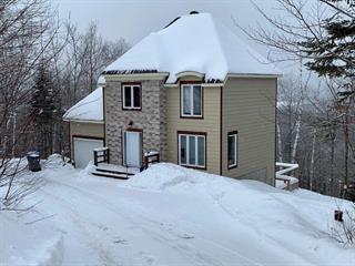 Maison à vendre à Sainte-Adèle, Laurentides, 4575, Rue de la Rogeloise, 25137066 - Centris.ca