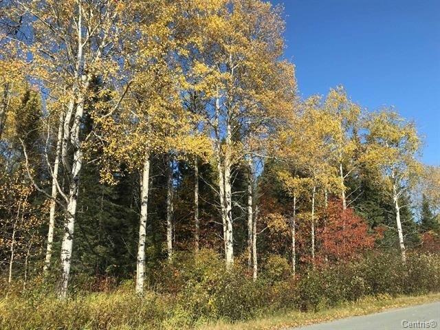 Terrain à vendre à Rouyn-Noranda, Abitibi-Témiscamingue, Route des Pionniers, 13353191 - Centris.ca