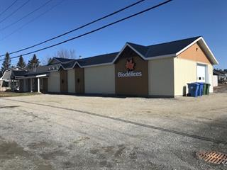 Commercial building for sale in Thetford Mines, Chaudière-Appalaches, 999, Rue  Christophe-Colomb, 24949441 - Centris.ca
