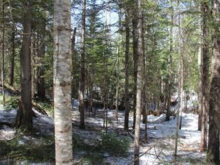 Lot for sale in Morin-Heights, Laurentides, Rue  Brunet, 13741584 - Centris.ca
