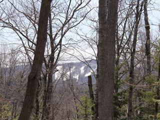 Lot for sale in Morin-Heights, Laurentides, Rue  Brunet, 20648157 - Centris.ca