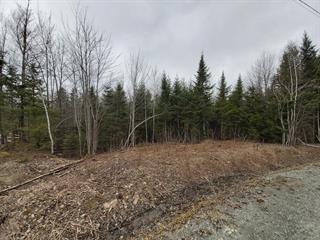 Lot for sale in Eastman, Estrie, Rue de Ville-Bois, 28471162 - Centris.ca