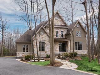 Maison à vendre à Boucherville, Montérégie, 690, Rue du Bosquet, 25547839 - Centris.ca