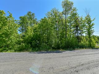 Lot for sale in Saint-Denis-de-Brompton, Estrie, 60, Rue des Goélands, 22152459 - Centris.ca