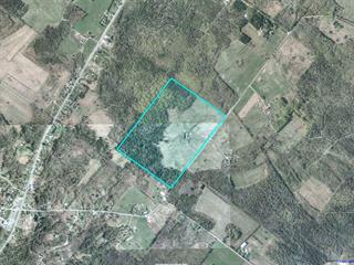 Farm for sale in Cleveland, Estrie, 213Z, Chemin  Healy, 24171380 - Centris.ca
