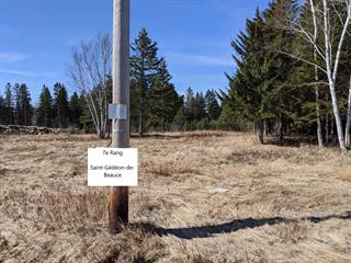 Lot for sale in Saint-Gédéon-de-Beauce, Chaudière-Appalaches, 7e Rang, 26934970 - Centris.ca