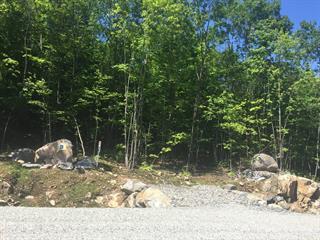 Terrain à vendre à Cantley, Outaouais, 18, Impasse du Belvédère, 28166087 - Centris.ca