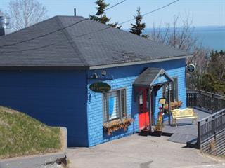 Commercial building for sale in Saint-Irénée, Capitale-Nationale, 505, Rue  Principale, 18913817 - Centris.ca