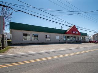 Commercial building for sale in Saint-Édouard-de-Lotbinière, Chaudière-Appalaches, 2515, Rue  Principale, 11019518 - Centris.ca