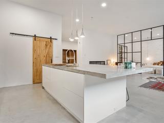 Loft / Studio for sale in Salaberry-de-Valleyfield, Montérégie, 11, Rue  East Park, apt. 2, 25746848 - Centris.ca