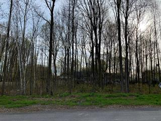 Lot for sale in Crabtree, Lanaudière, 3e Avenue, 14086503 - Centris.ca
