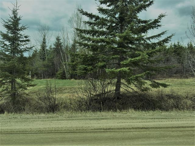 Lot for sale in Sainte-Anne-du-Lac, Laurentides, 7e Rang Est, 25045839 - Centris.ca