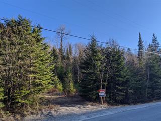 Lot for sale in Rivière-Rouge, Laurentides, 1287Z, Montée du Lac-Castor, 25905609 - Centris.ca