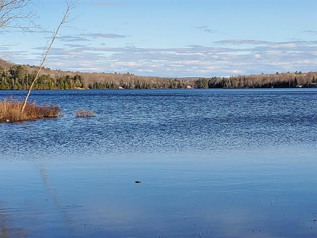 Terrain à vendre à Litchfield, Outaouais, 90C, Chemin  Crawford, 17530264 - Centris.ca