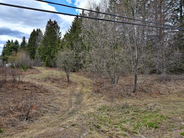 Terrain à vendre à Mandeville, Lanaudière, Rang  Saint-Augustin, 25747466 - Centris.ca