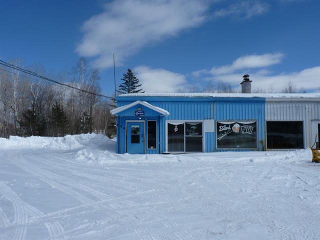 Duplex à vendre à Saint-Aimé-du-Lac-des-Îles, Laurentides, 894 - 896, Route  309, 17729811 - Centris.ca