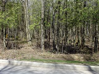 Lot for sale in Saint-André-d'Argenteuil, Laurentides, Chemin de la Rivière-Rouge Nord, 18063378 - Centris.ca