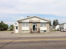 Commercial building for sale in Dolbeau-Mistassini, Saguenay/Lac-Saint-Jean, 45, Rue  De Quen, 26183637 - Centris.ca