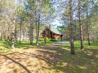 Maison à vendre à Mont-Tremblant, Laurentides, 405, 8e Rang, 23383495 - Centris.ca