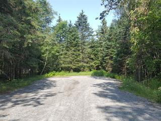 Lot for sale in Mont-Tremblant, Laurentides, Chemin des Verges-d'Or, 27137119 - Centris.ca