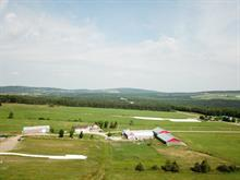 Farm for sale in Saint-Julien, Chaudière-Appalaches, 3169, 2e Rang Ouest, 27948393 - Centris.ca