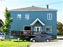 Immeuble à revenus à vendre à Sainte-Sabine (Chaudière-Appalaches), Chaudière-Appalaches, 93, Rue  Principale, 21369754 - Centris.ca