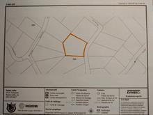 Lot for sale in Sainte-Adèle, Laurentides, Rue des Cimes, 25418842 - Centris.ca