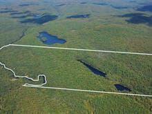 Terre à vendre à La Macaza, Laurentides, 99, Chemin du Lac-Tortue, 28060455 - Centris.ca