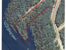 Lot for sale in Sainte-Christine-d'Auvergne, Capitale-Nationale, Avenue du Cap, 13340604 - Centris.ca