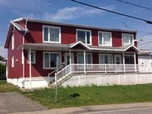 Maison à vendre à Saint-Nérée-de-Bellechasse, Chaudière-Appalaches, 2092, Route  Principale, 16386445 - Centris.ca