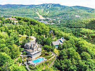 Maison à vendre à Mont-Tremblant, Laurentides, 175, Chemin du Pain-de-Sucre, 12428950 - Centris.ca