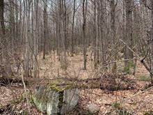 Terre à vendre à Saint-Cuthbert, Lanaudière, 4391A, Rang  Saint-Amable, 20890238 - Centris.ca