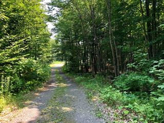 Terrain à vendre à Gore, Laurentides, 206, Chemin  Cambria, 12735461 - Centris.ca