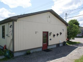 Maison à vendre à Sainte-Agathe-des-Monts, Laurentides, 105, Rue  Demontigny, 25027321 - Centris.ca
