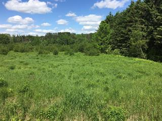 Lot for sale in Saint-Adelphe, Mauricie, Route  352, 16742817 - Centris.ca