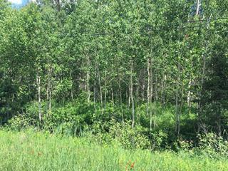 Terrain à vendre à Val-d'Or, Abitibi-Témiscamingue, Route des Campagnards, 17386260 - Centris.ca