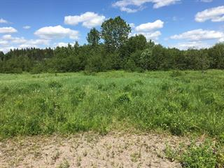 Lot for sale in Saint-Adelphe, Mauricie, Route  352, 15110451 - Centris.ca