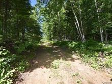 Terrain à vendre à Kazabazua, Outaouais, Chemin  Jeannine, 18135845 - Centris.ca