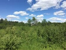 Lot for sale in Saint-Adelphe, Mauricie, Route  352, 9530009 - Centris