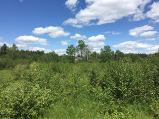 Lot for sale in Saint-Adelphe, Mauricie, Route  352, 9530009 - Centris.ca