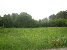 Lot for sale in Clarendon, Outaouais, Chemin  Wesley, 22855239 - Centris.ca