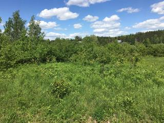 Lot for sale in Saint-Adelphe, Mauricie, Route  352, 28442112 - Centris.ca